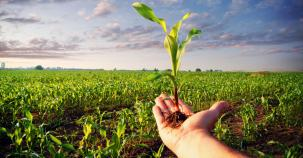 Ангажименти на Европейската растителнозащитна индустрия до 2030г.