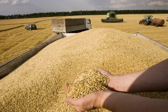 Резултат с изображение за малко земеделие