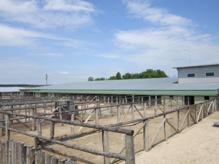 животновъдство, земеделие, Agrozona.bg