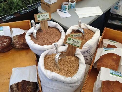 пазар, пшеница, Agrozona.bg