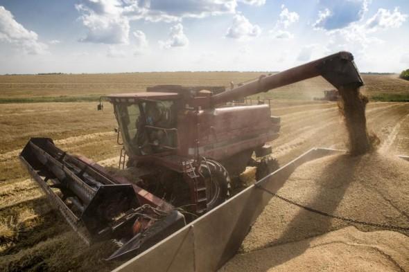 jatva zarno grain -agrozona-bg