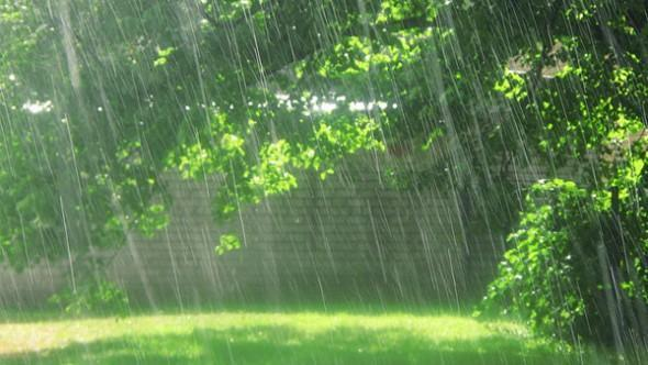 валежи, времето, Agrozona.bg