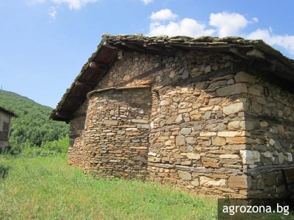 въпрос, културно, Agrozona.bg