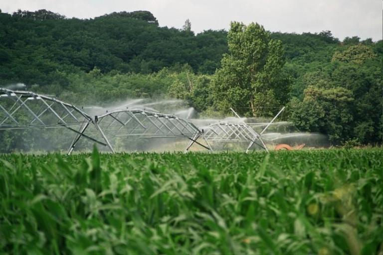 Напояване, Полша, Agrozona.bg