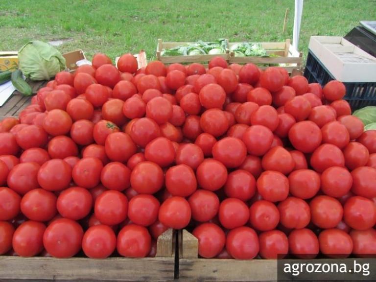 зеленчуци, площи, Agrozona.bg