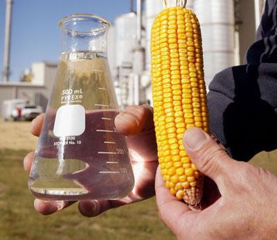 ГМО, защита, Agrozona.bg
