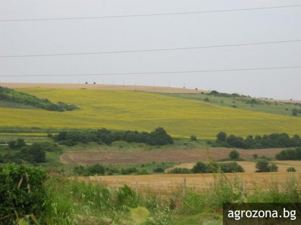 Опитната станция по поливно земеделие, поливно земеделие, Agrozona.bg