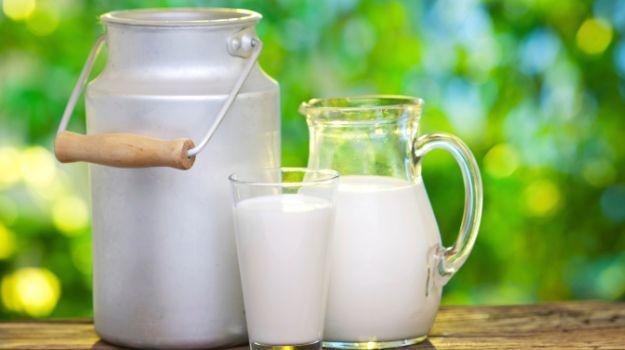 Rabobank, мляко, Agrozona.bg