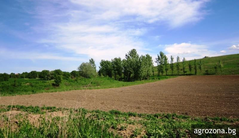земеделие, климат, Agrozona.bg
