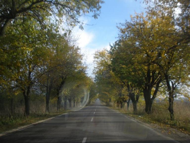 общински пътища, подмярка 7.2, Agrozona.bg