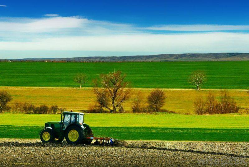 оран трактор пролет