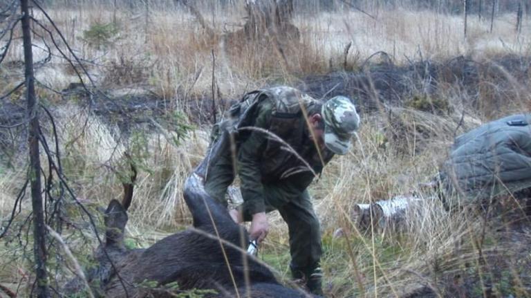 бракониери, бракониерство, Agrozona.bg