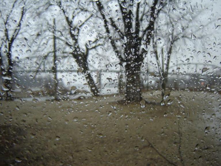 валежи, дъжд, Agrozona.bg