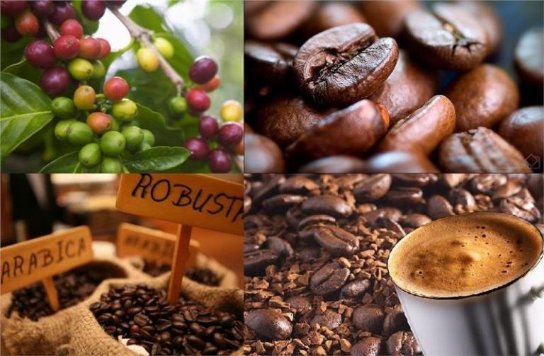 кафе, световен ден на кафето, Agrozona.bg
