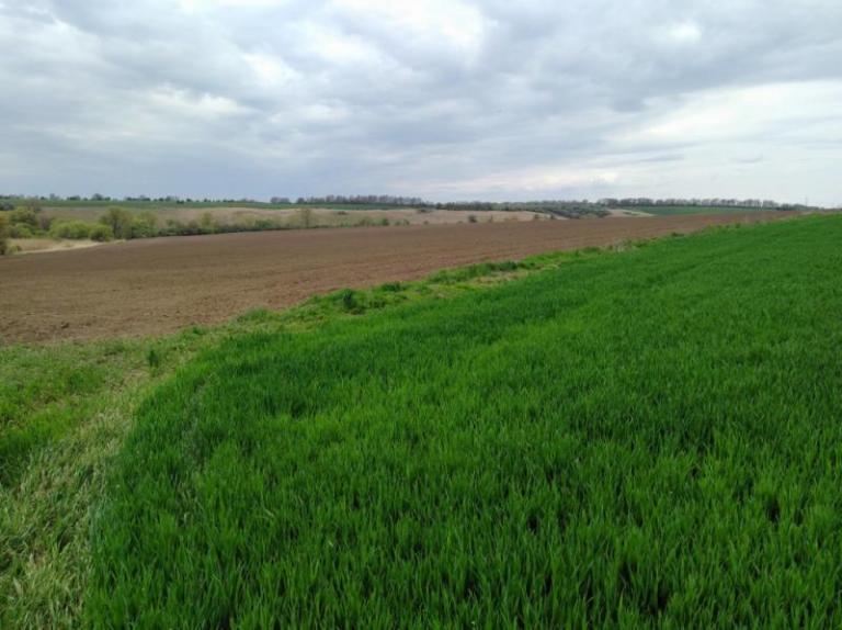 мярка 11, финансиране, Agrozona.bg