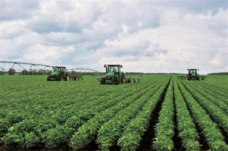 производство на картофи, Agrozona.bg