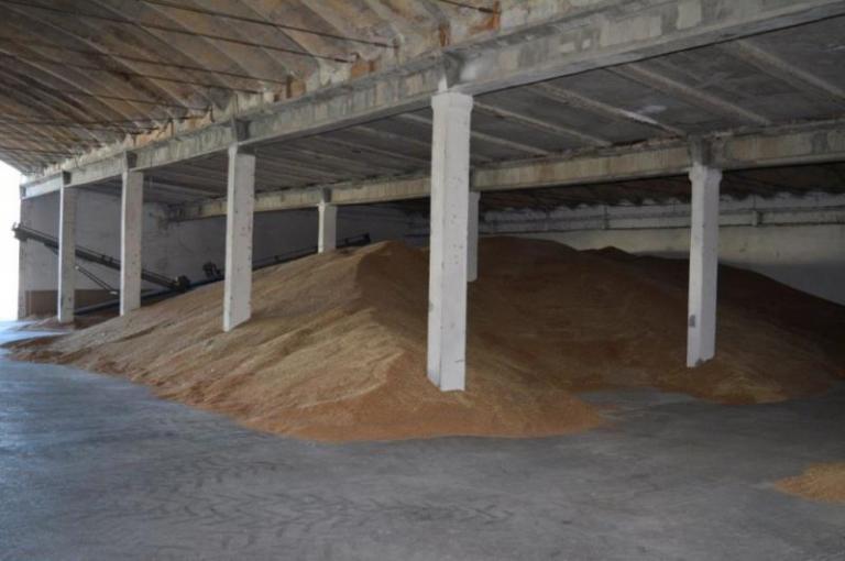 пшеница, Agrozona.bg