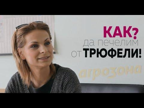Николета Симон
