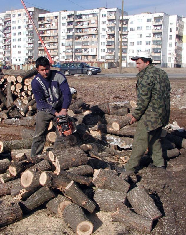 дърва за огрев, СИДП, Agrozona.bg