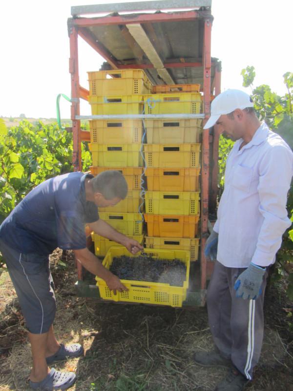 визи, земеделие, Agrozona.bg