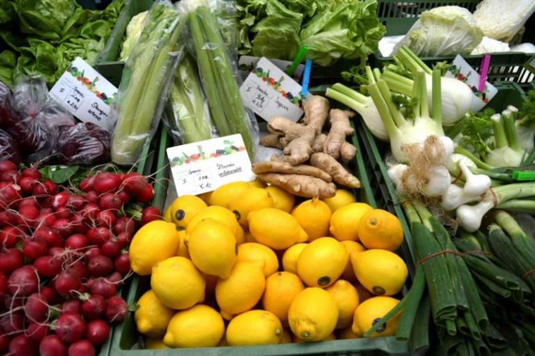 износ на плодове, Agrozona.bg