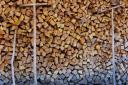 25% от дървесината през 2019 г. ще се продава чрез електронни търгове