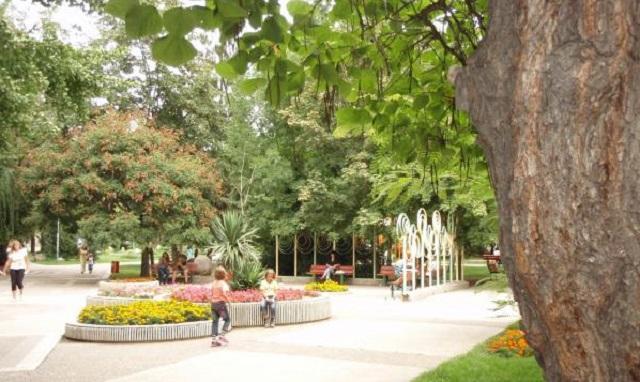 Градска градина, гъсеници, Agrozona.bg