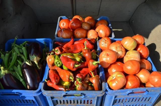 зеленчуци, Каварна, Agrozona.bg