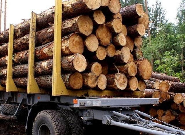 дървесина, електронни търгове, Agrozona.bg