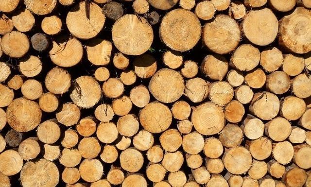 ДГС, дърва за огрев, Agrozona.bg