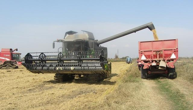 България, зърно, Agrozona.bg