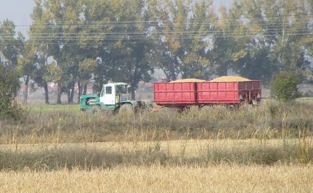 горива, Зърнопрозиводители, Agrozona.bg