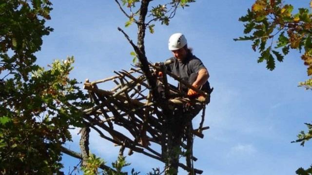 изкуствени гнезда, лешояди, Agrozona.bg