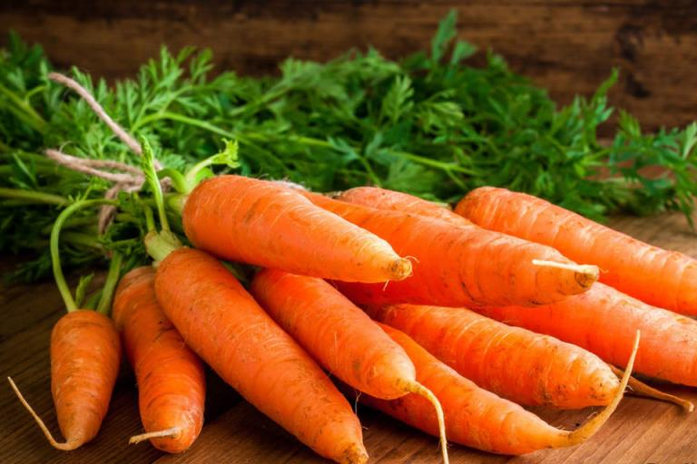 отглеждане на моркови, Agrozona.bg