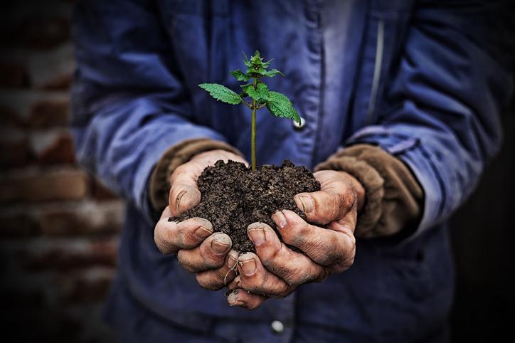 2021, биологично производство, Agrozona.bg