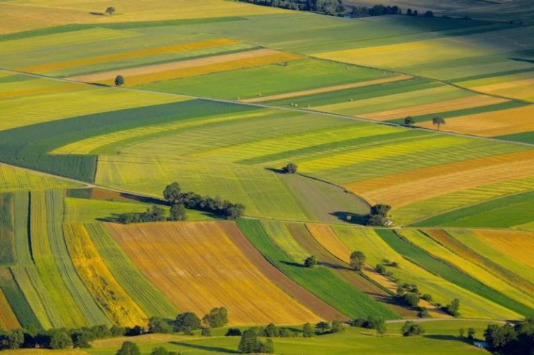 допустими за подпомагане, земеделци, Agrozona.bg