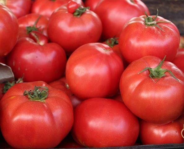 домати, ЕС, Agrozona.bg