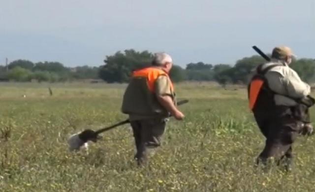 бракониери, жива примамка, Agrozona.bg