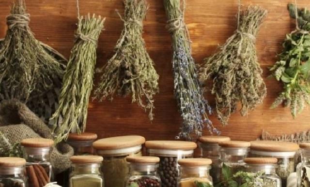 антиоксиданти, билки, Agrozona.bg