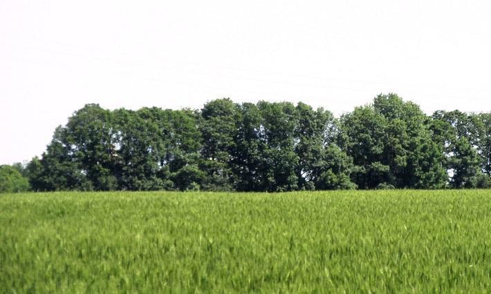 земеделие, земи, Agrozona.bg