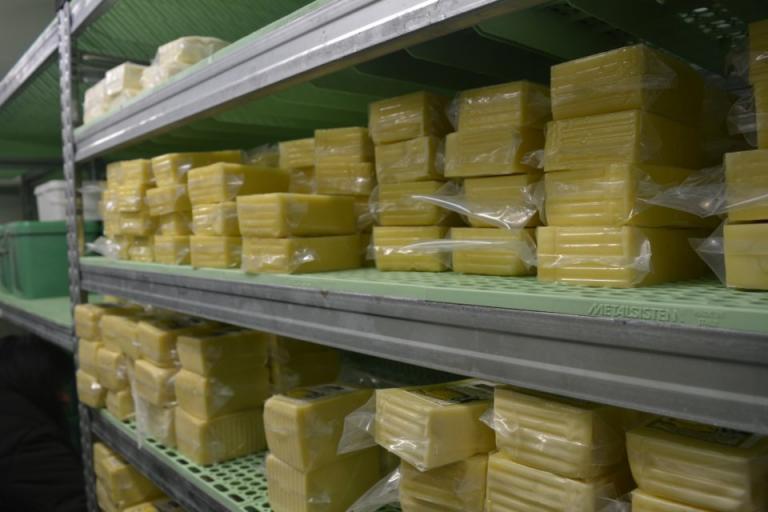 българско сирене, кашкавал, Agrozona.bg