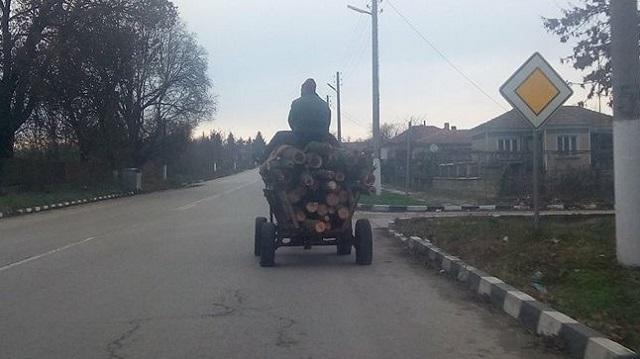 Варна, горски стражари, Agrozona.bg