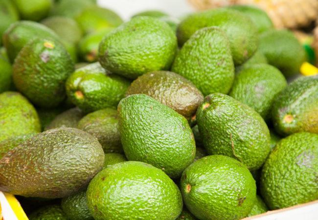 авокадо, внос, Agrozona.bg