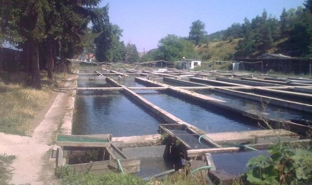 гласуване, Закон за водите, Agrozona.bg