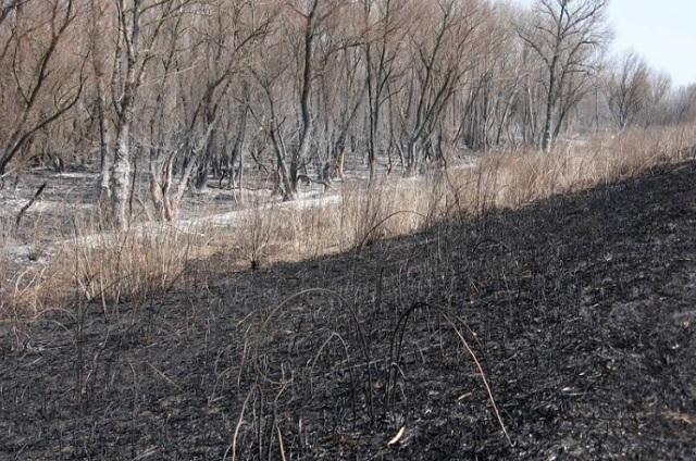 пожар, резерват, Agrozona.bg