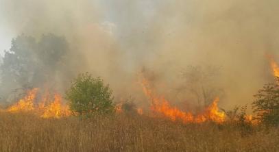 Само за два дни в Кюстендил избухнаха 41 пожара
