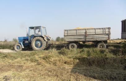 Приключи оценката на 1146 проекта по подмярка 6.1 за младите земеделски стопани