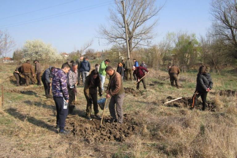 засаждане гора, Agrozona.bg
