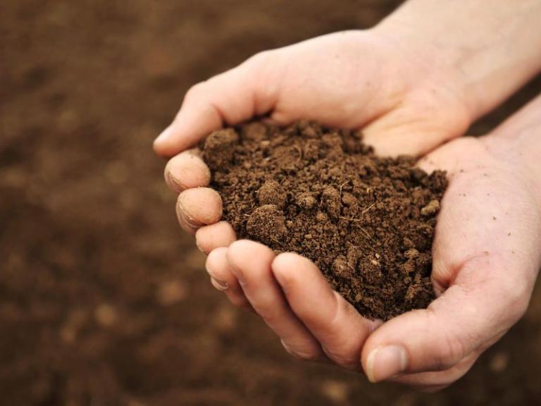 плодородие, почви, Agrozona.bg