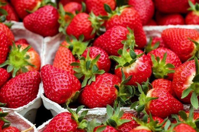витамини, сезонът на ягодите, Agrozona.bg
